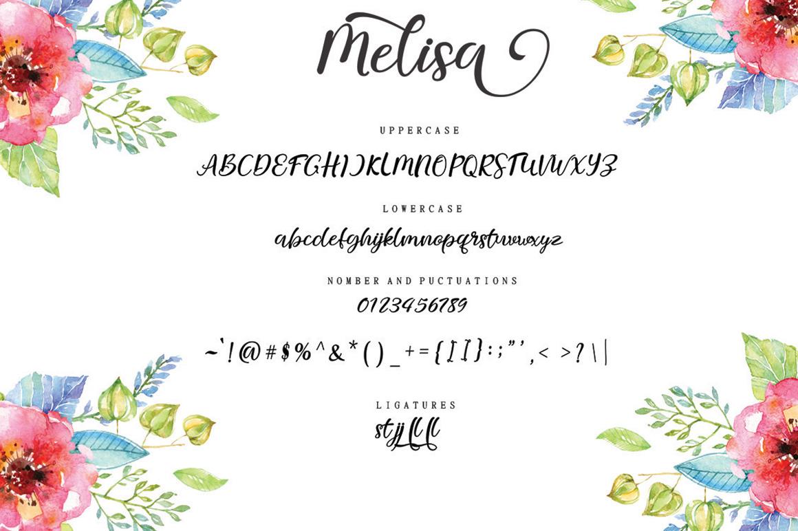 melisa script example image 7