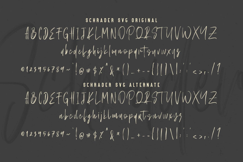 Schrader SVG Brush Font example image 9