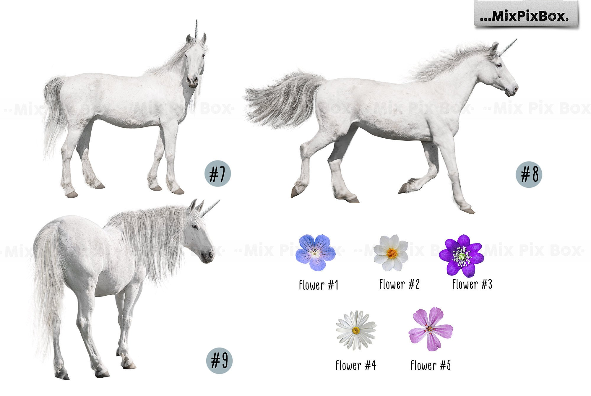 Unicorn PNG Overlays and Backdrops Pack example image 10