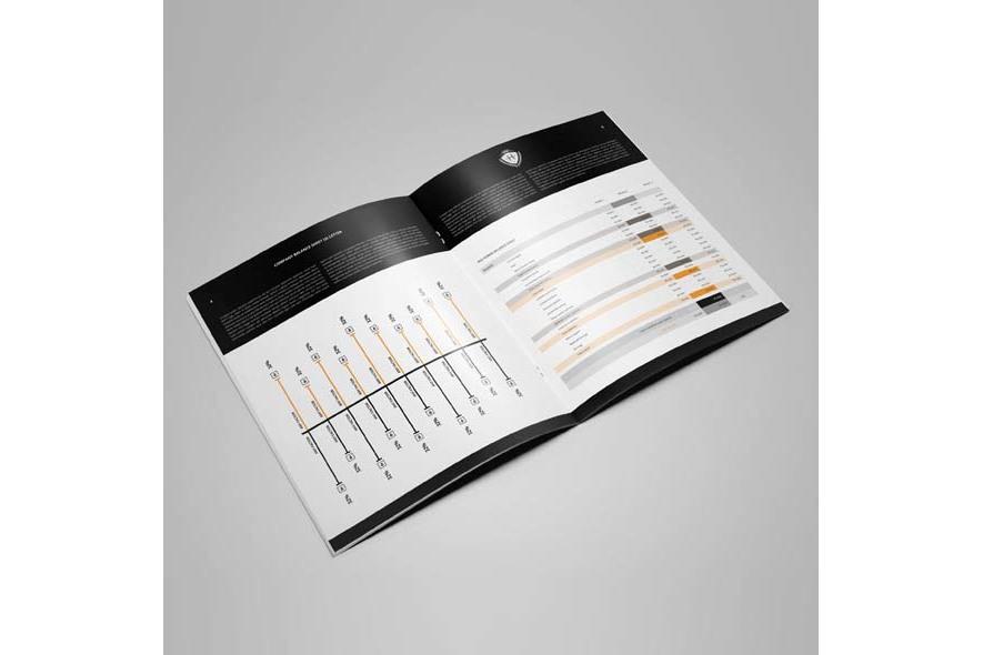 Company Balance Sheet US Letter example image 4