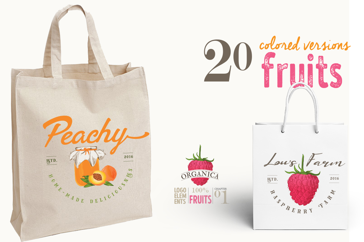 ORGANIC LOGO ELEMENTS  FRUITS example image 5
