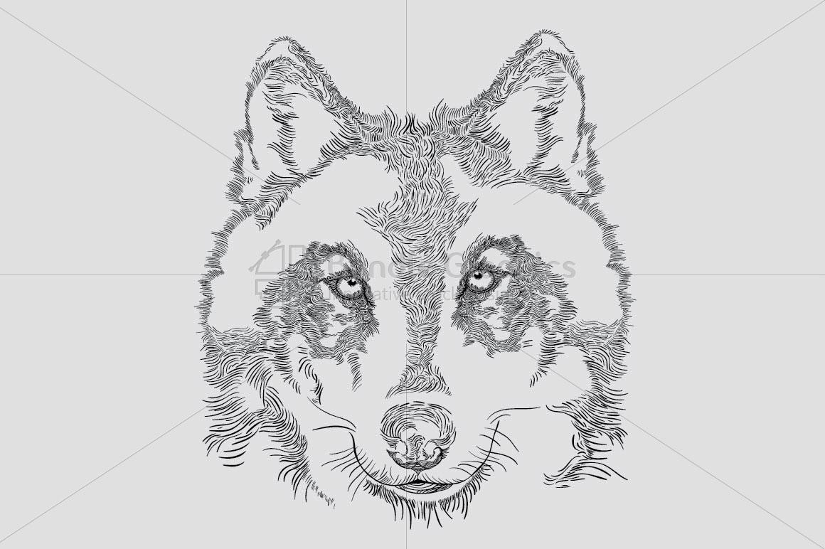 Wolf - Wild Animal  example image 1