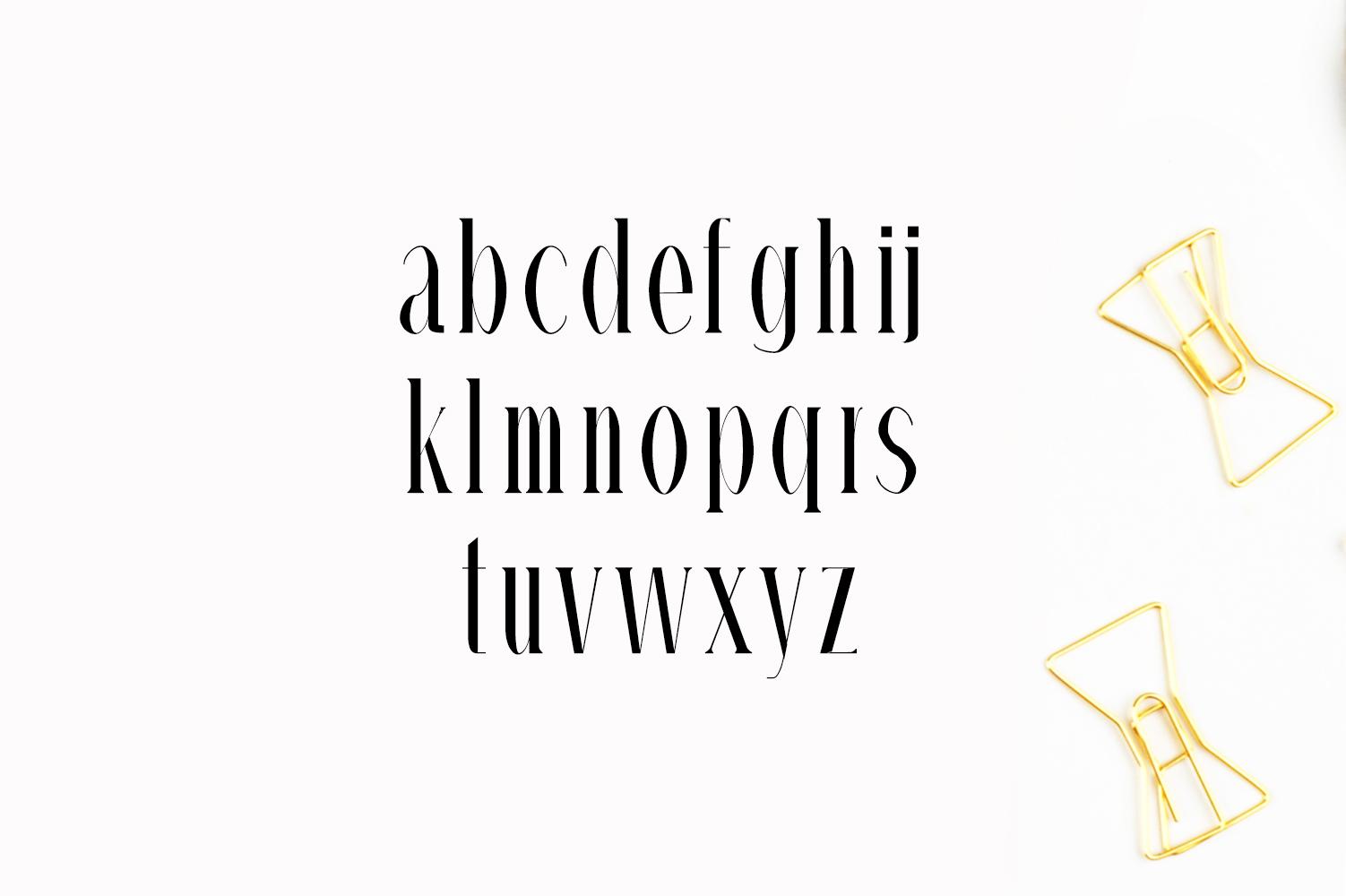Timm Serif Typeface example image 5