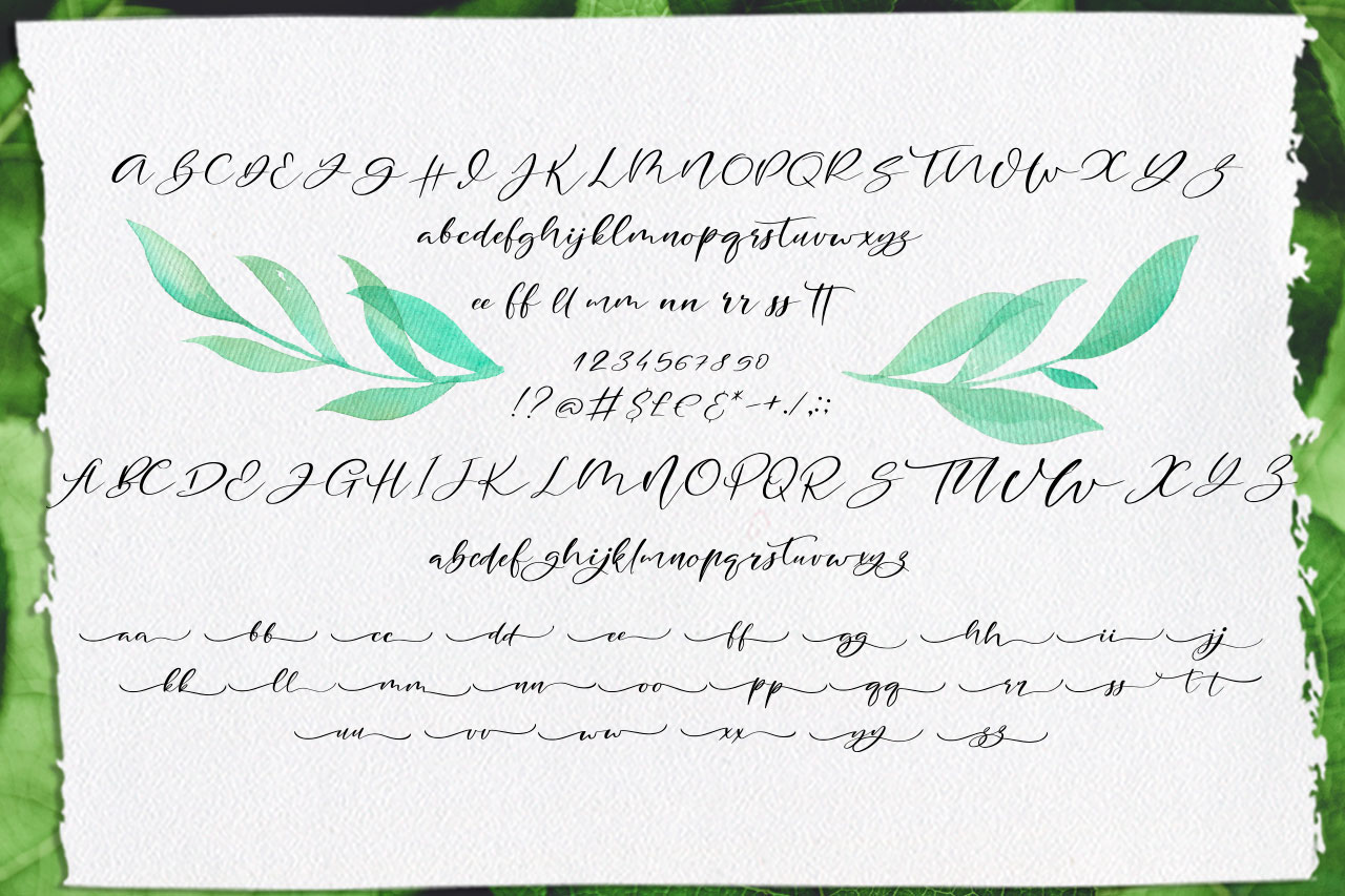 Blakeley Script Font & Watercolor Logos example image 8