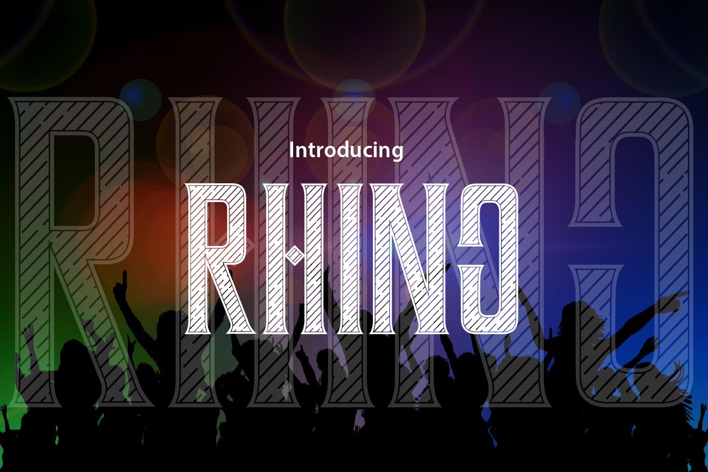 RHINO example image 2