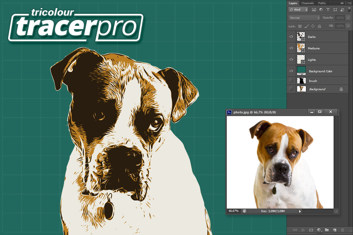 TracerPro example image 3