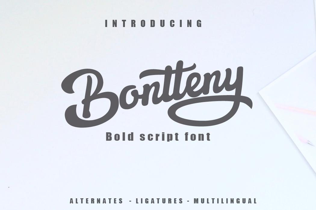 3 in 1 Premium script font example image 2