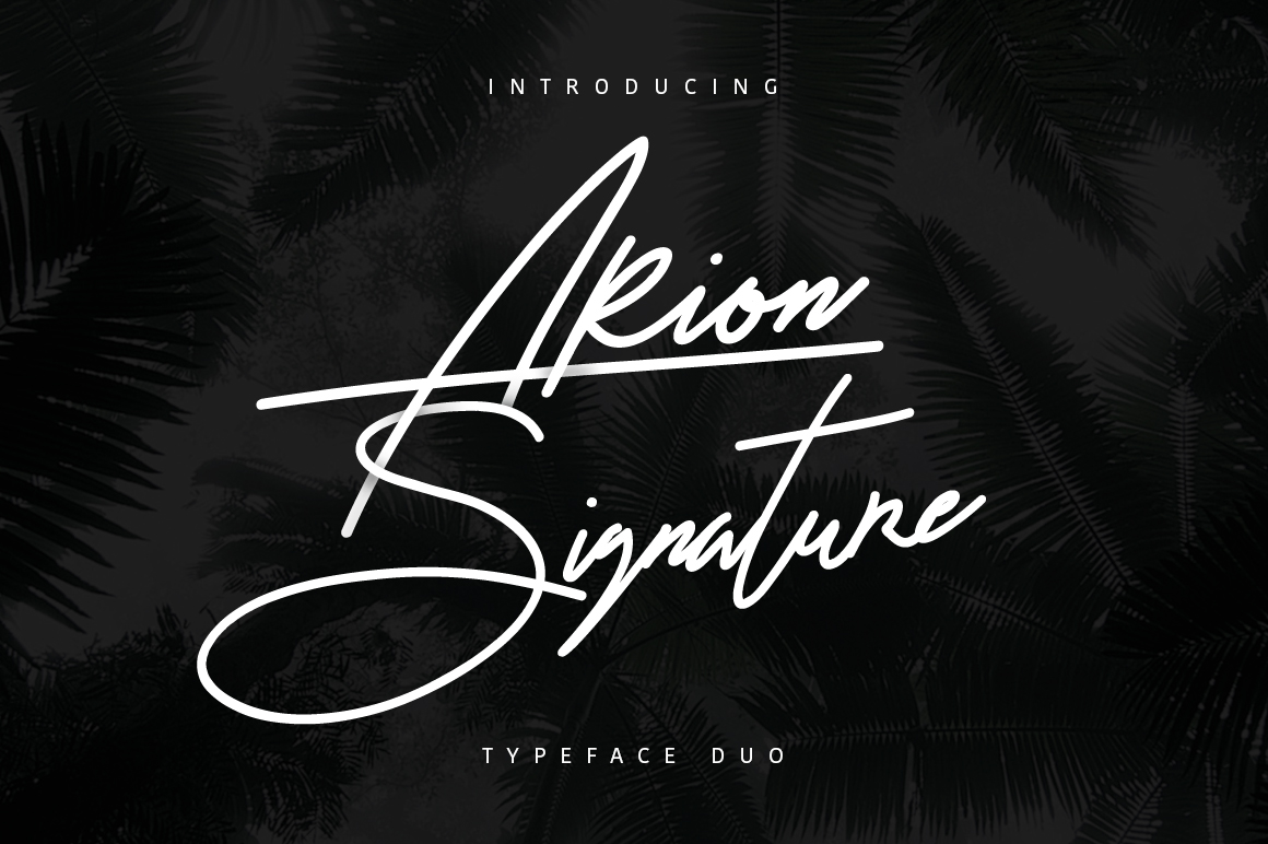 Arion Signature Font example image 1
