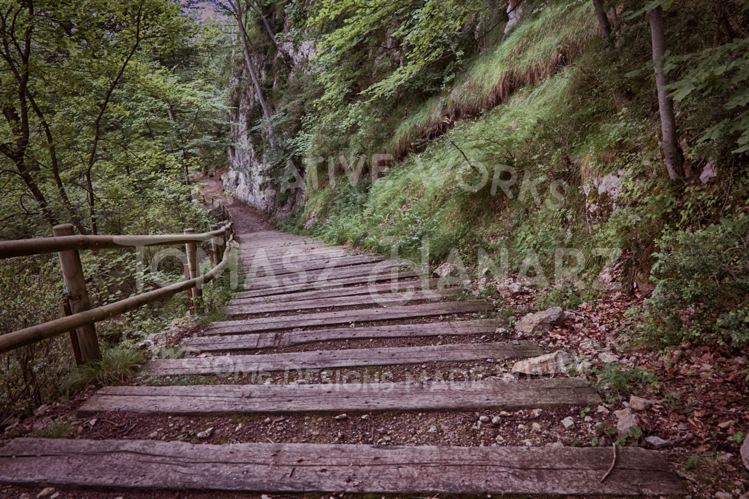 Stairs In The Forest example image 1