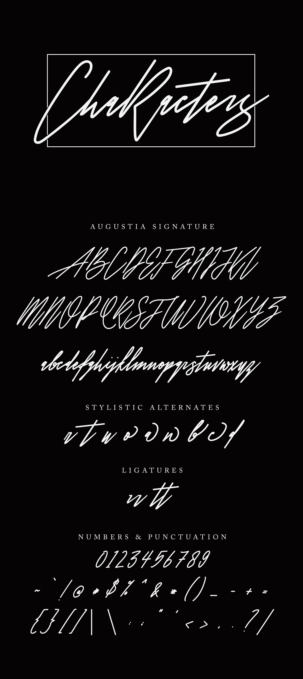 Augustia Signature Font example image 8