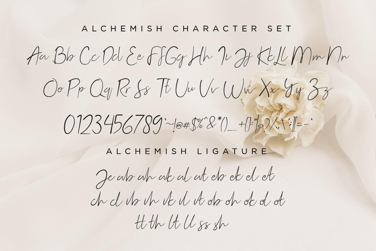 Alchemish Signature Script Font example image 11