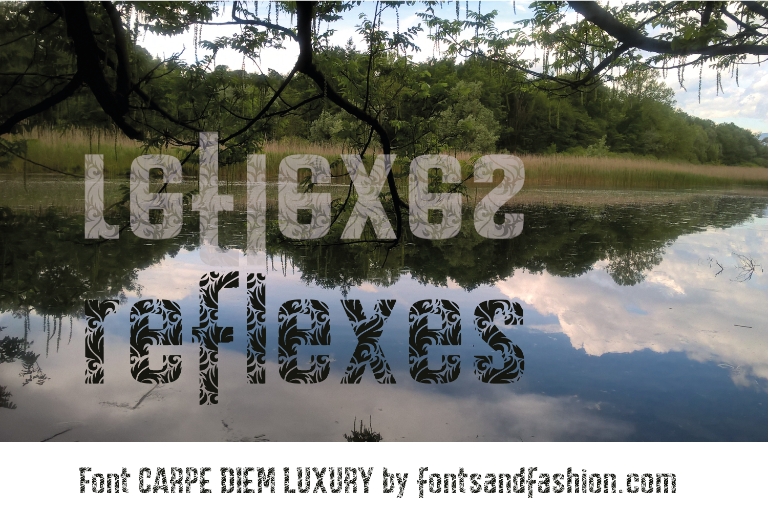 CARPE DIEM LUXURY example image 1