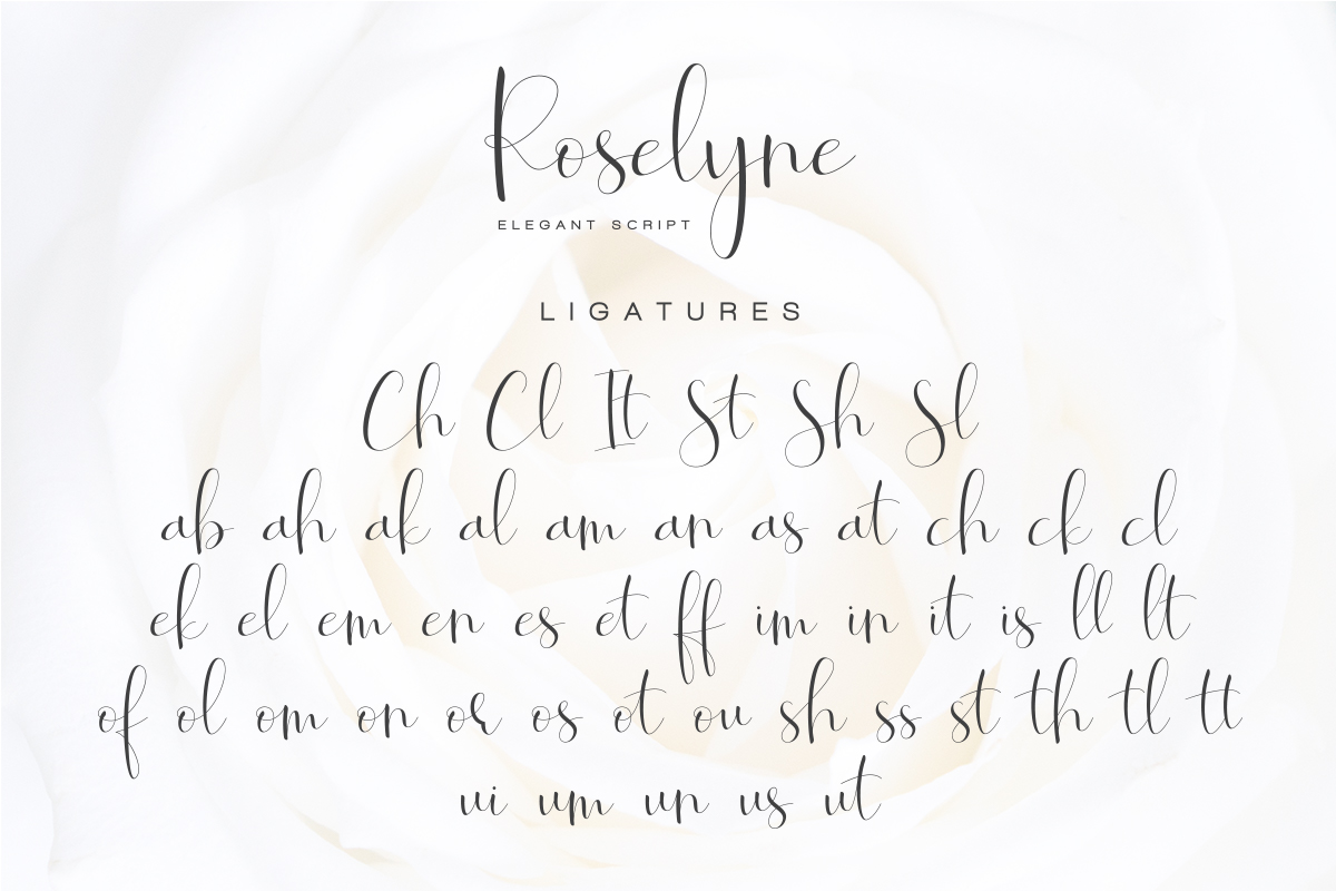 Roselyne Calligraphy Script Font example image 9