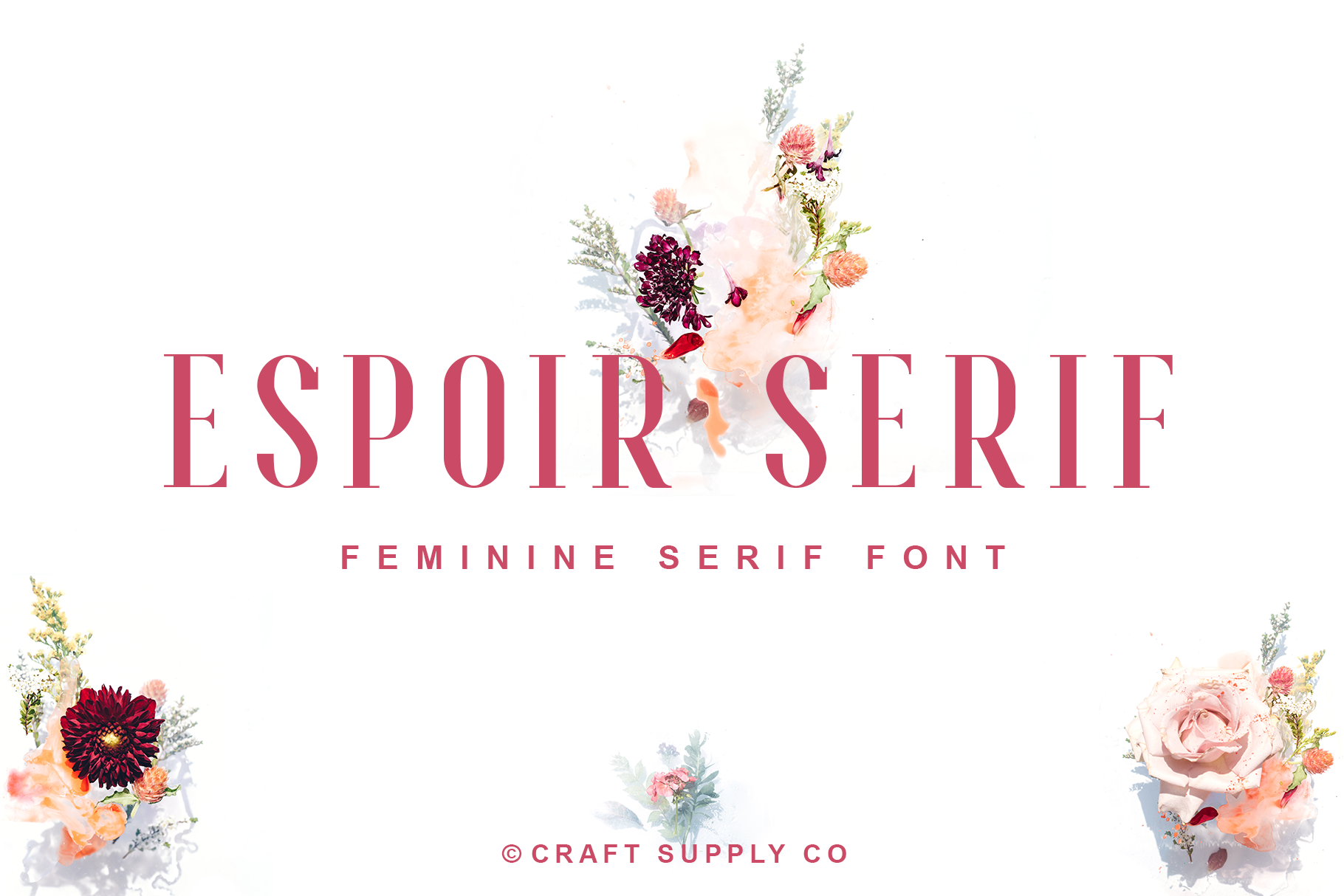 Espoir Serif Font Family example image 1