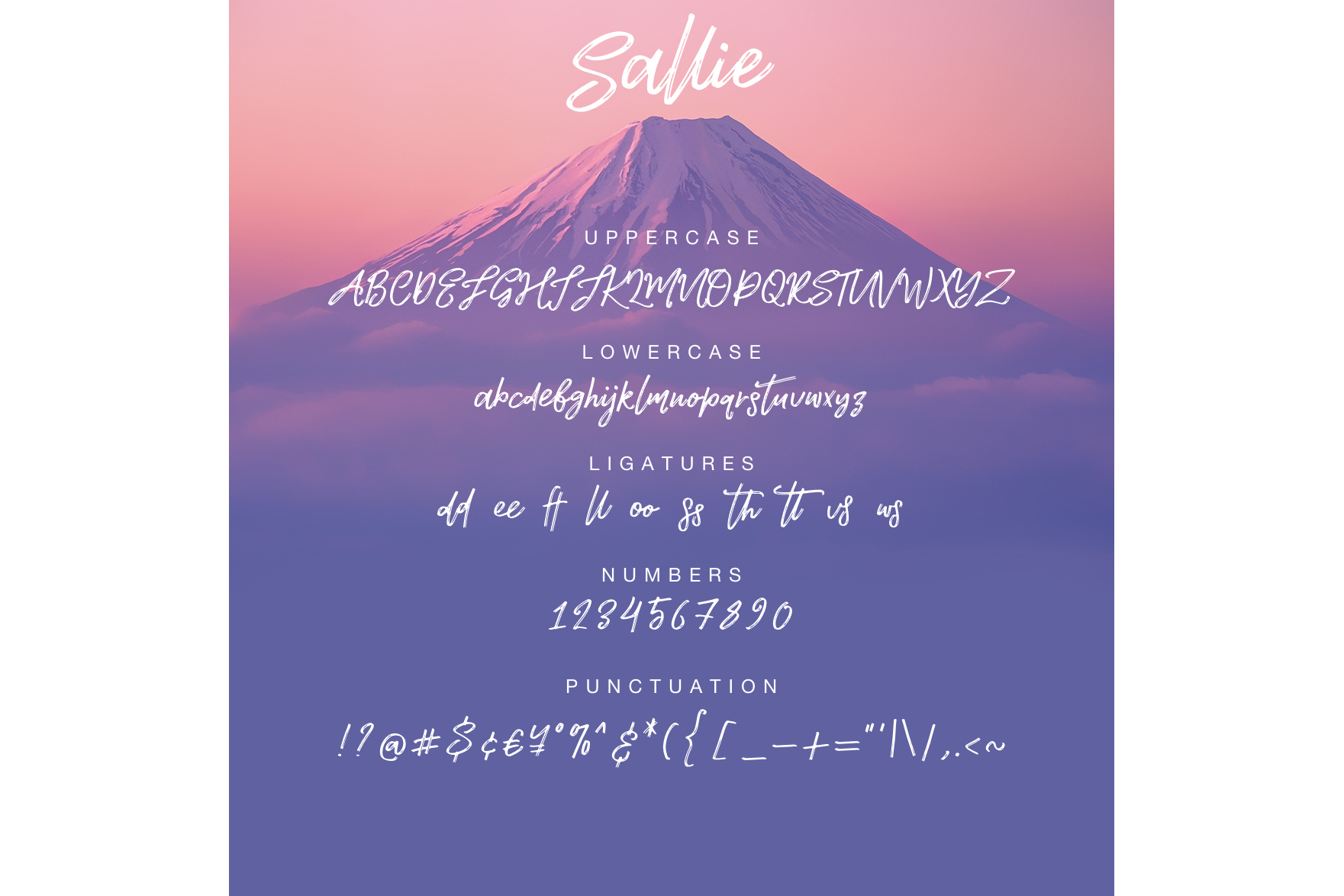 Sallie font example image 2