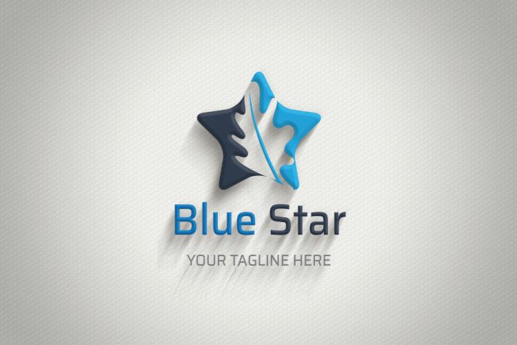 Star Shape Logo Design example image 4