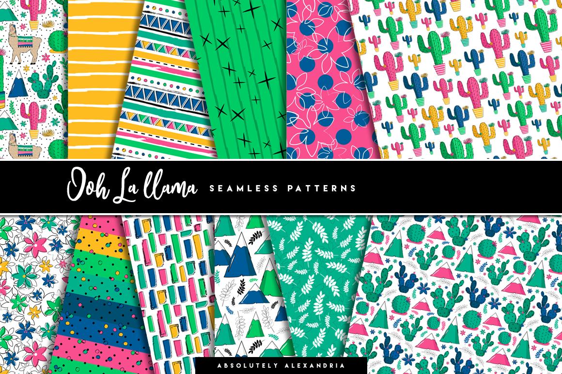 Ooh La llama Clipart Illustrations & Seamless Digital Papers example image 2