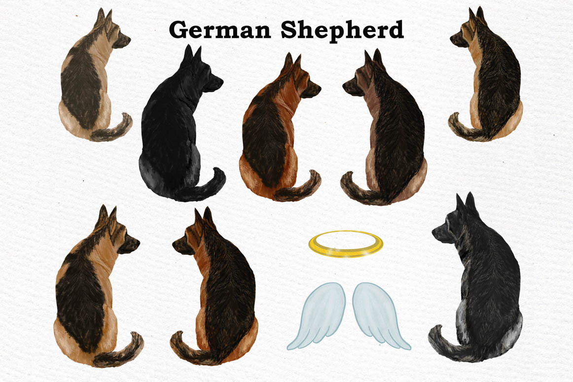 Dogs Clipart,Dog breeds Pet clipart,Watercolor dogs clipart example image 3
