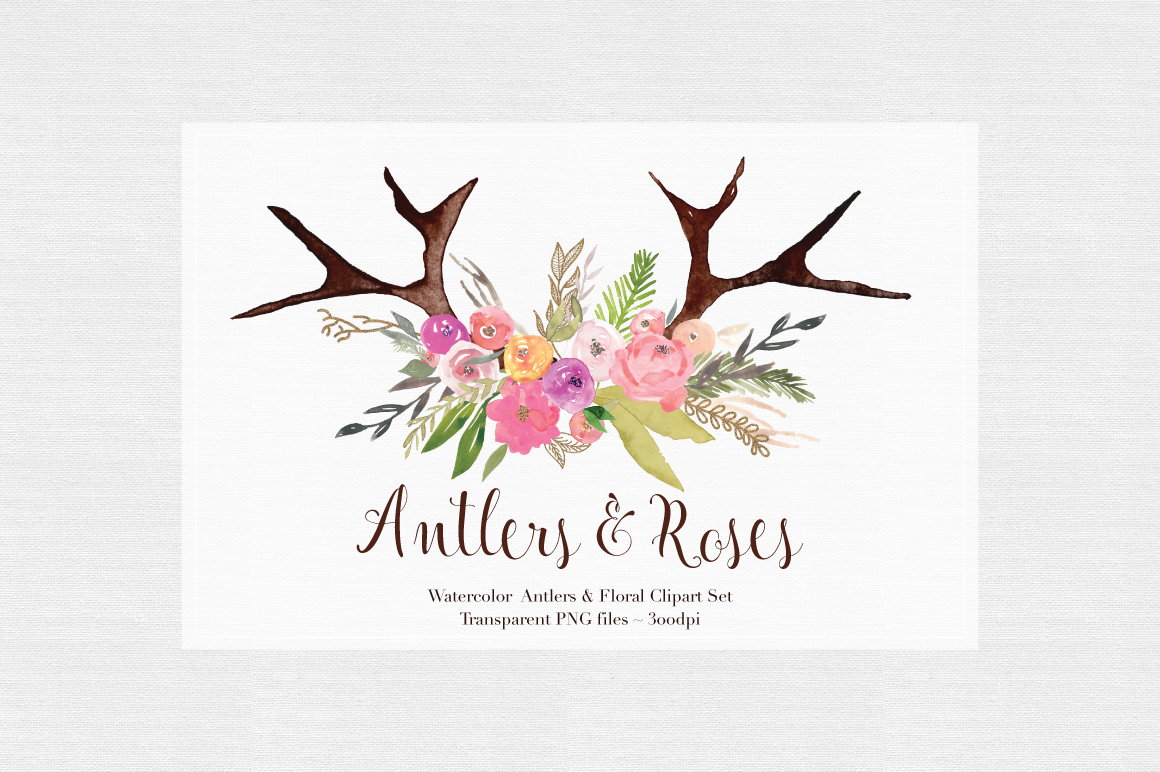 Antlers & Roses Watercolor Clipart example image 2
