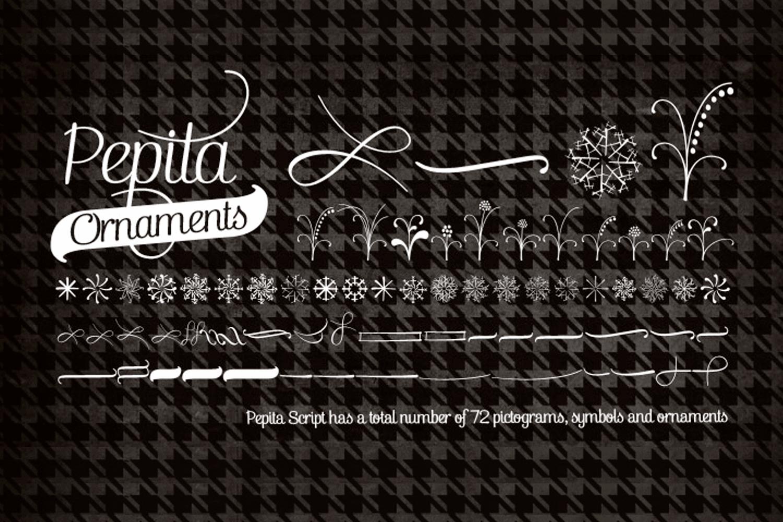 Pepita Script example image 3