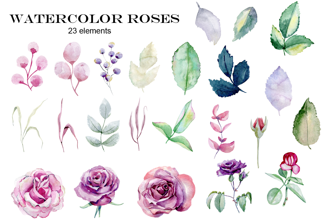 Watercolor roses. Set. example image 3