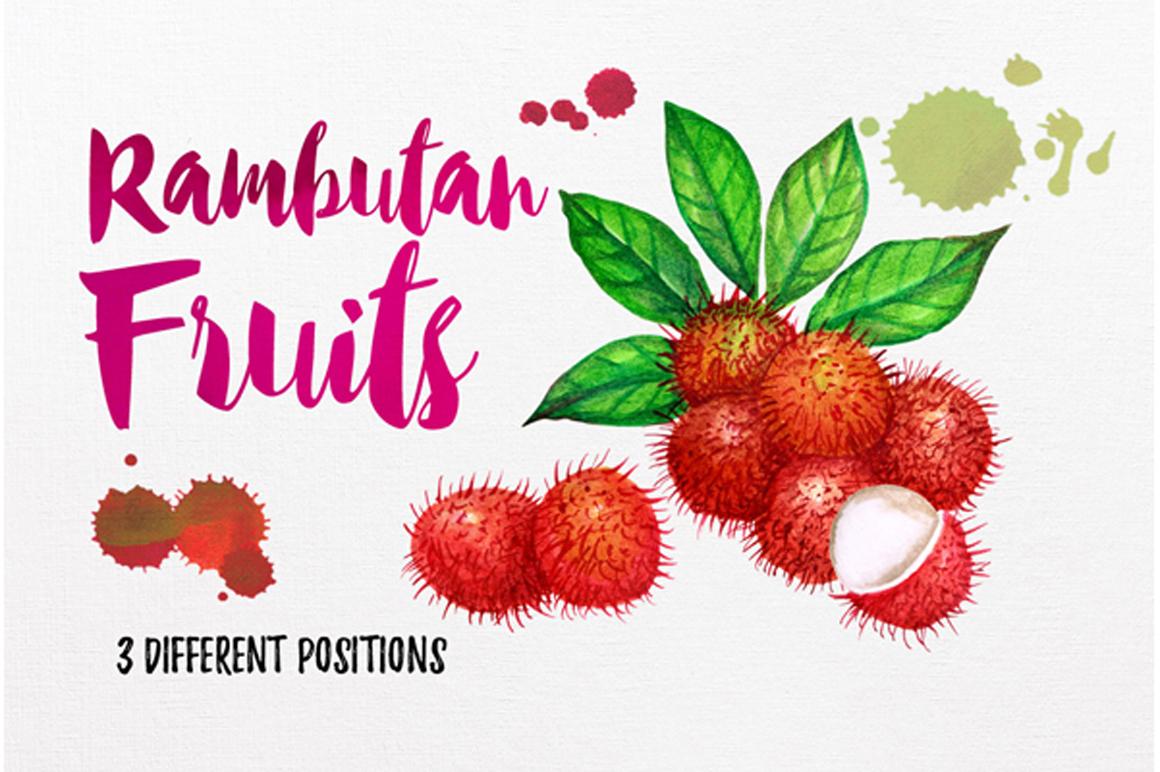 watercolor fruit vol.7 example image 8