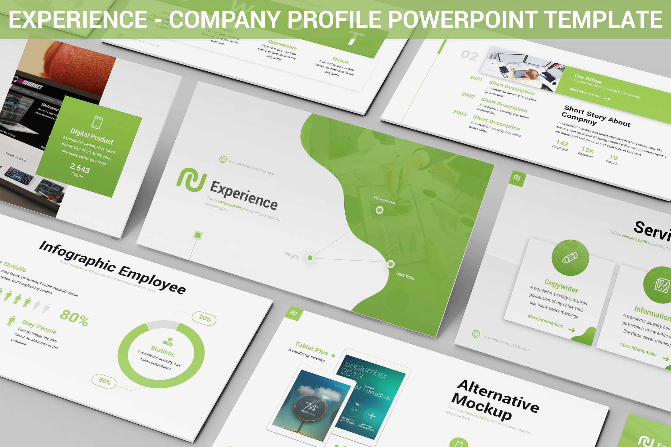 experience company profile powerpoint template. Black Bedroom Furniture Sets. Home Design Ideas