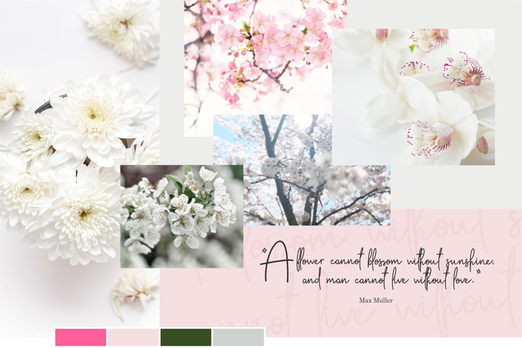 Apple Blossom Font example image 8