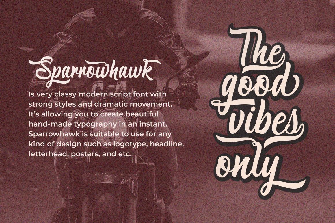 Sparrowhawk Script example image 5
