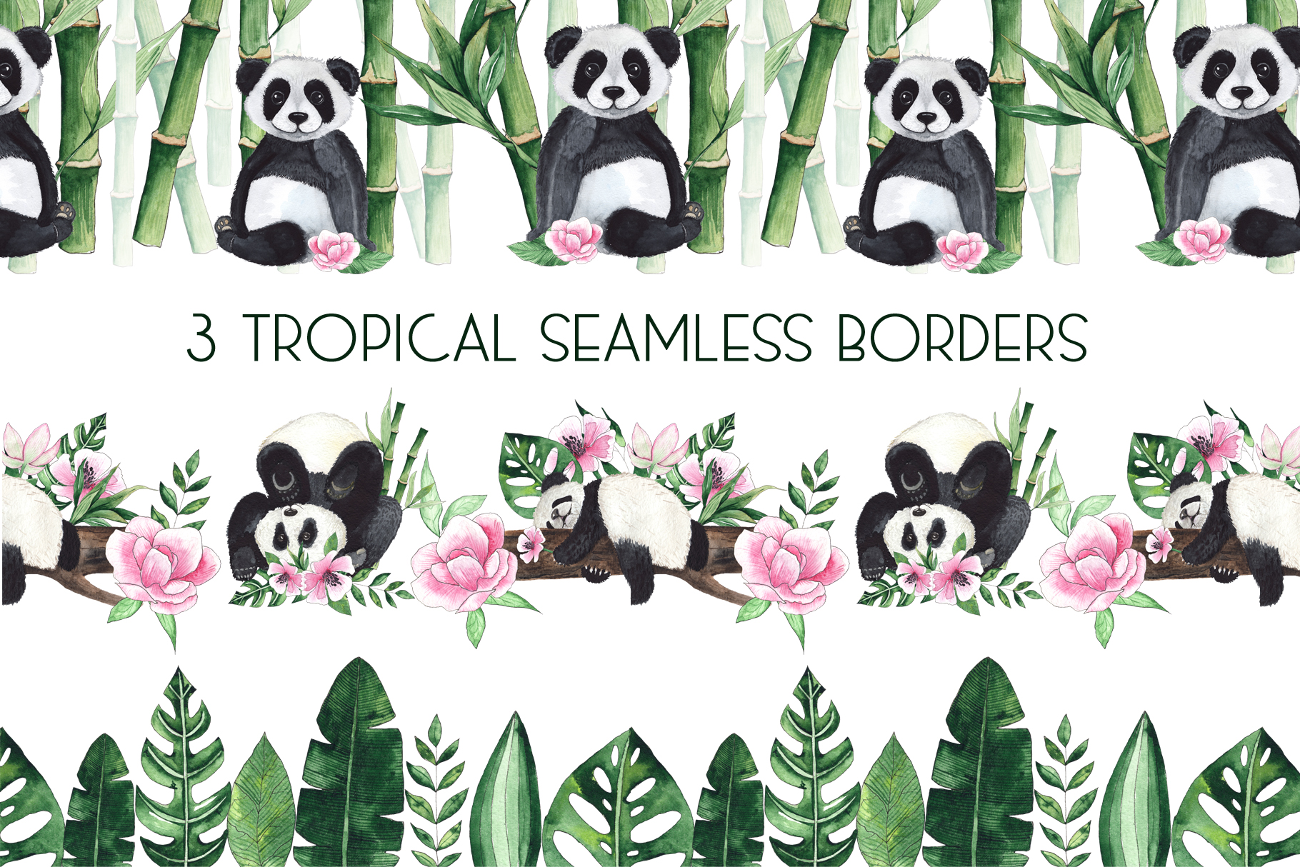 Pandas. Tropical collection example image 4