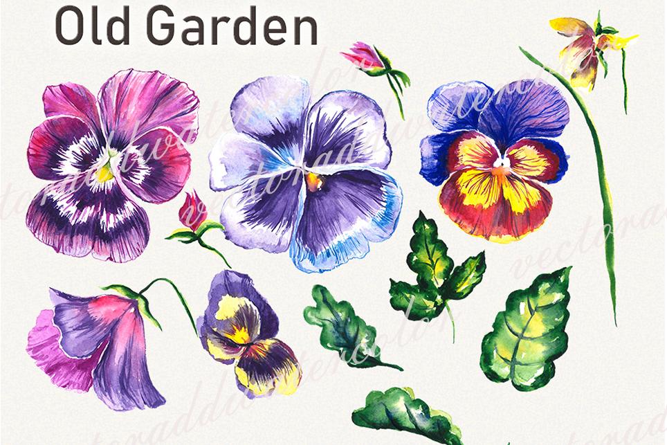 Garden clipart, spring clipart, garden tools,pansy clipart example image 4