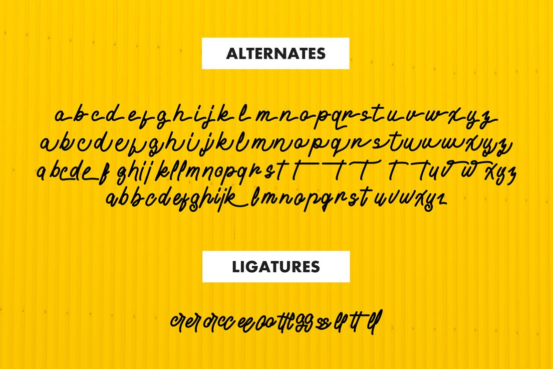 Alvaro - Stylistic Monoline example image 4