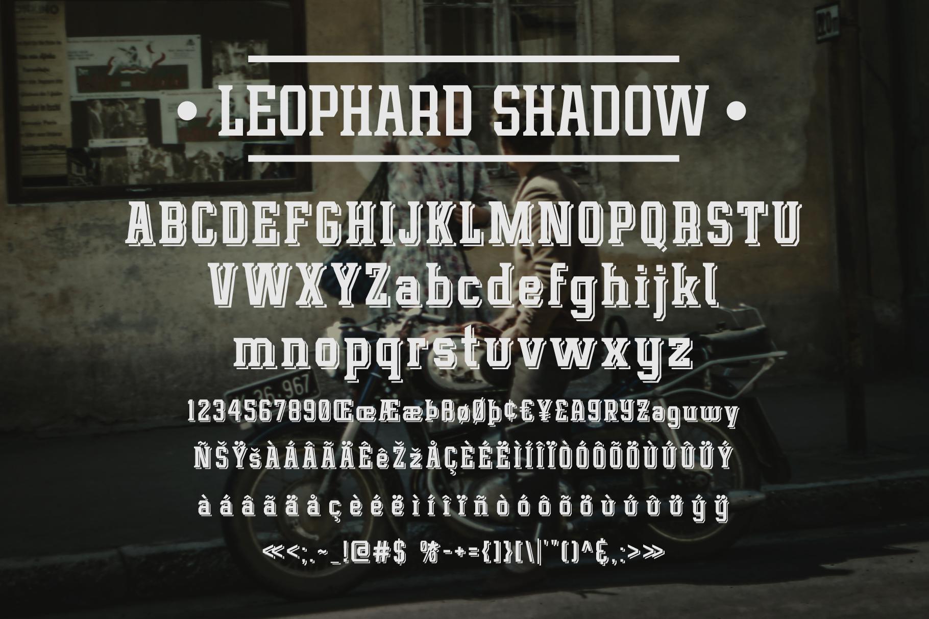 Leophard Font Family example image 4