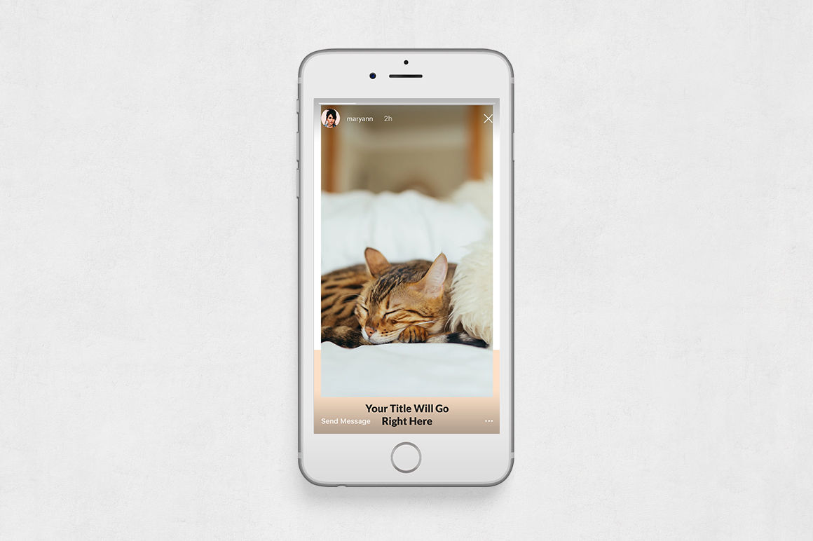 Cats Animated Instagram Stories example image 6