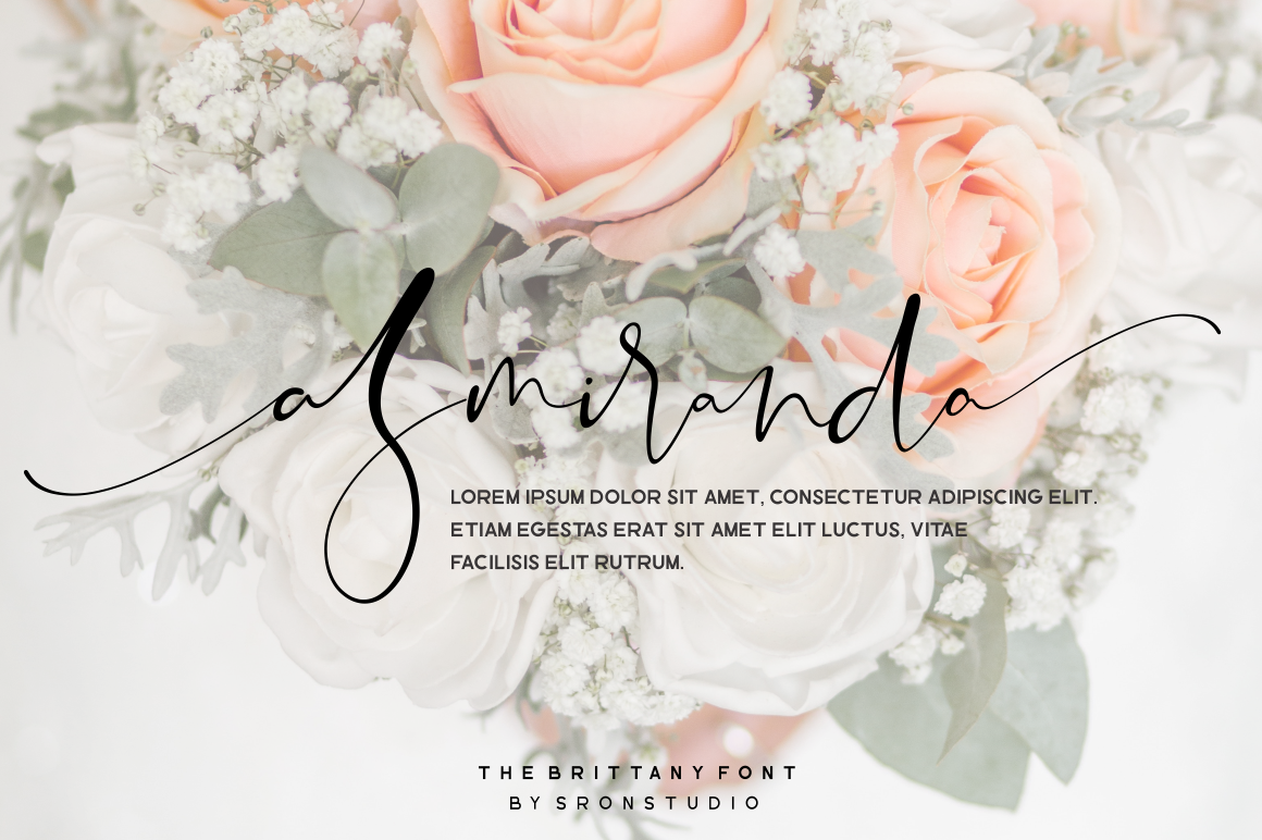 The Brittany // Font Trio example image 9