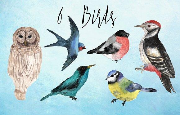 Watercolor Birds Clip Art example image 6