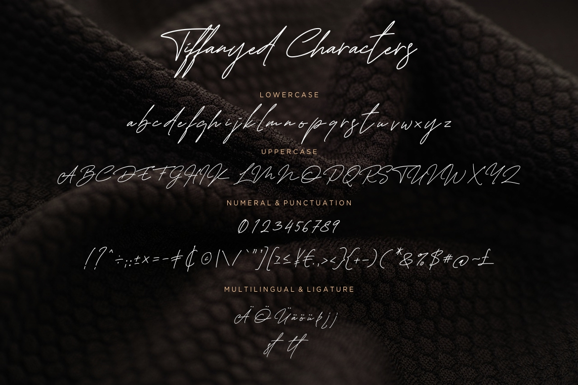 Tiffanyed Signature Collection example image 7
