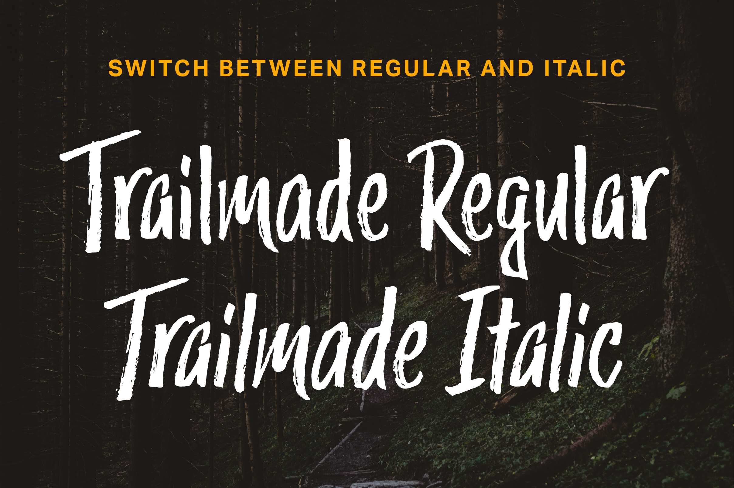 Trailmade Font Family example image 10