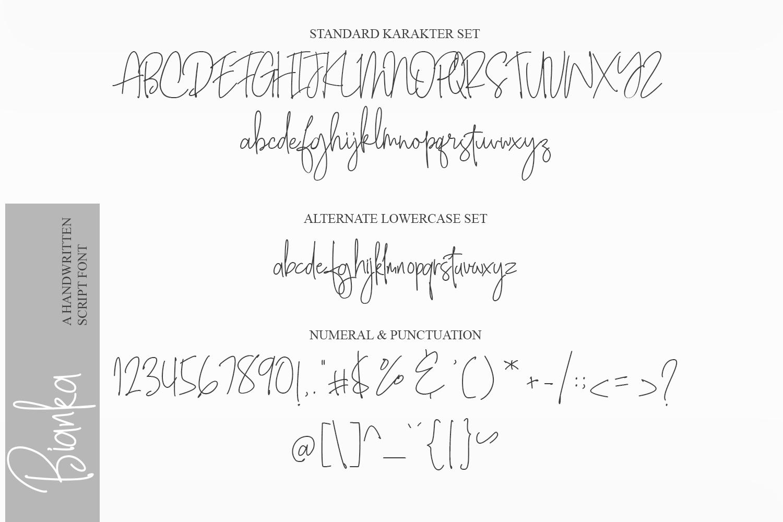 Bianka Script Font example image 4