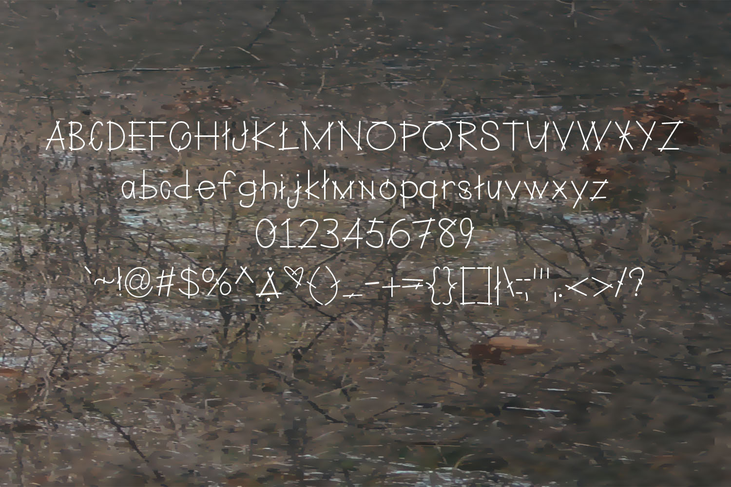 Twigs A Branchy Font example image 2