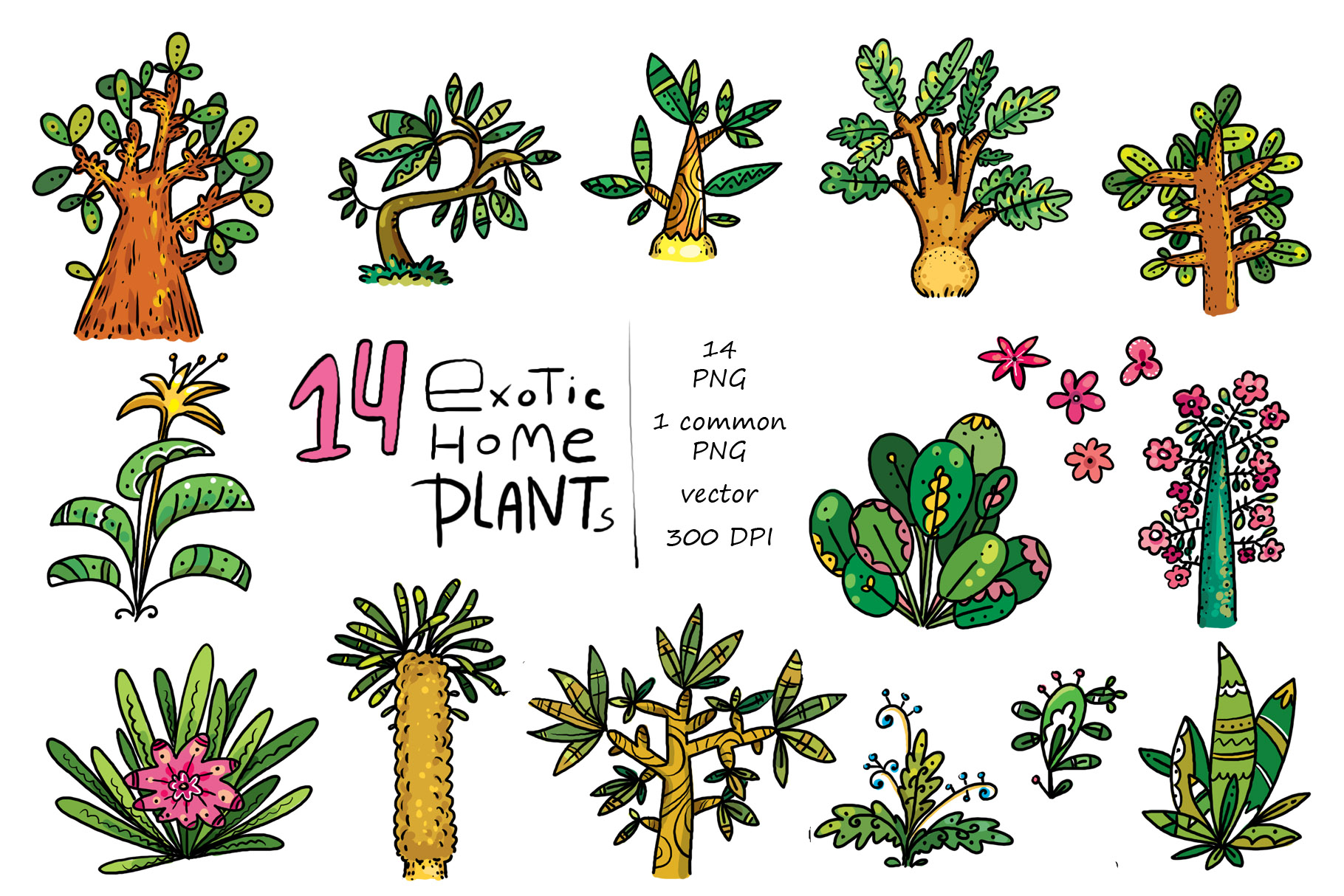 Exotic Home Plants - prints and cards example image 2