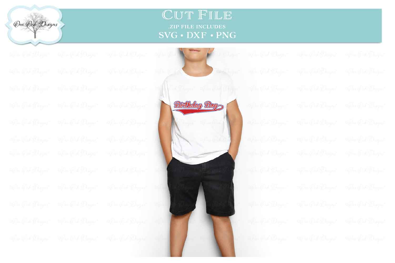Birthday Boy Baseball Script example image 3