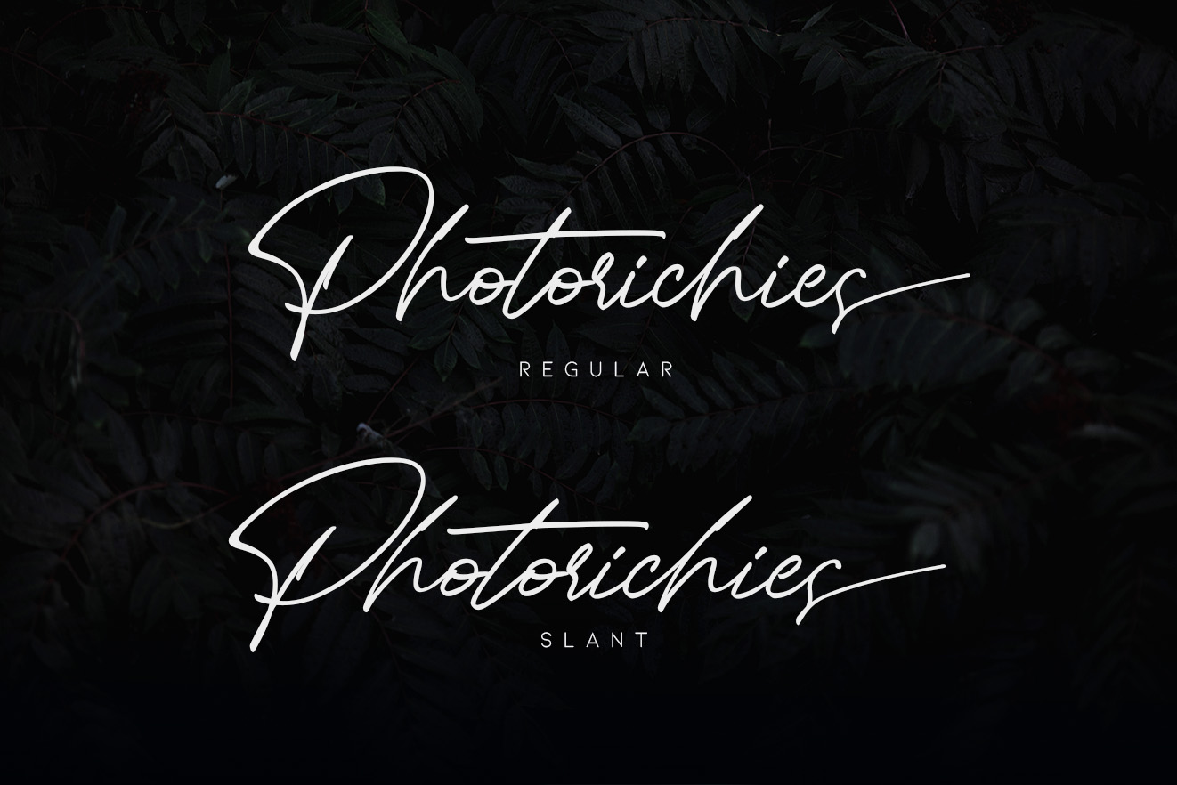 Photoricies - Photographer Script example image 13