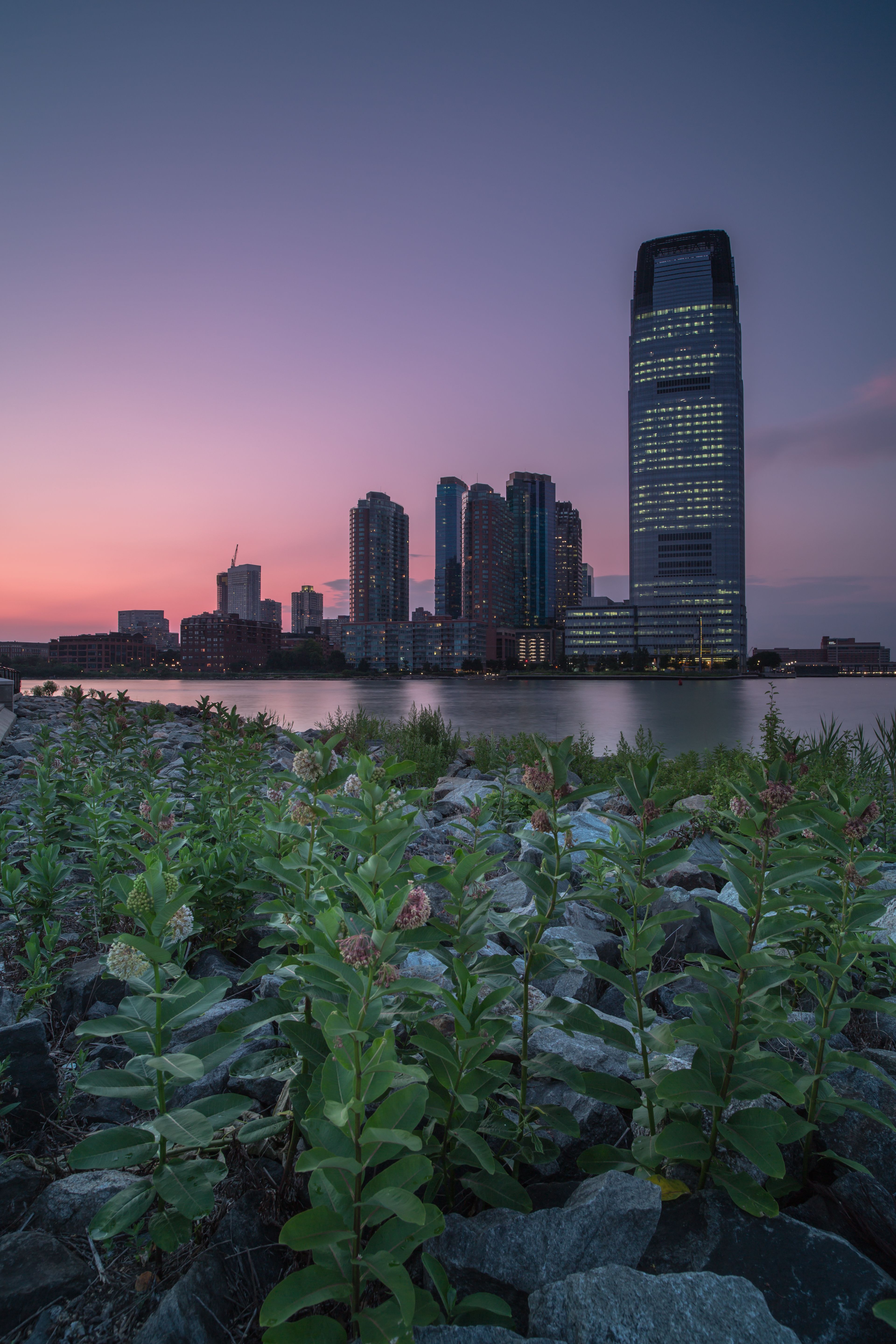 Jersey city during sunset view from flowers example image 1