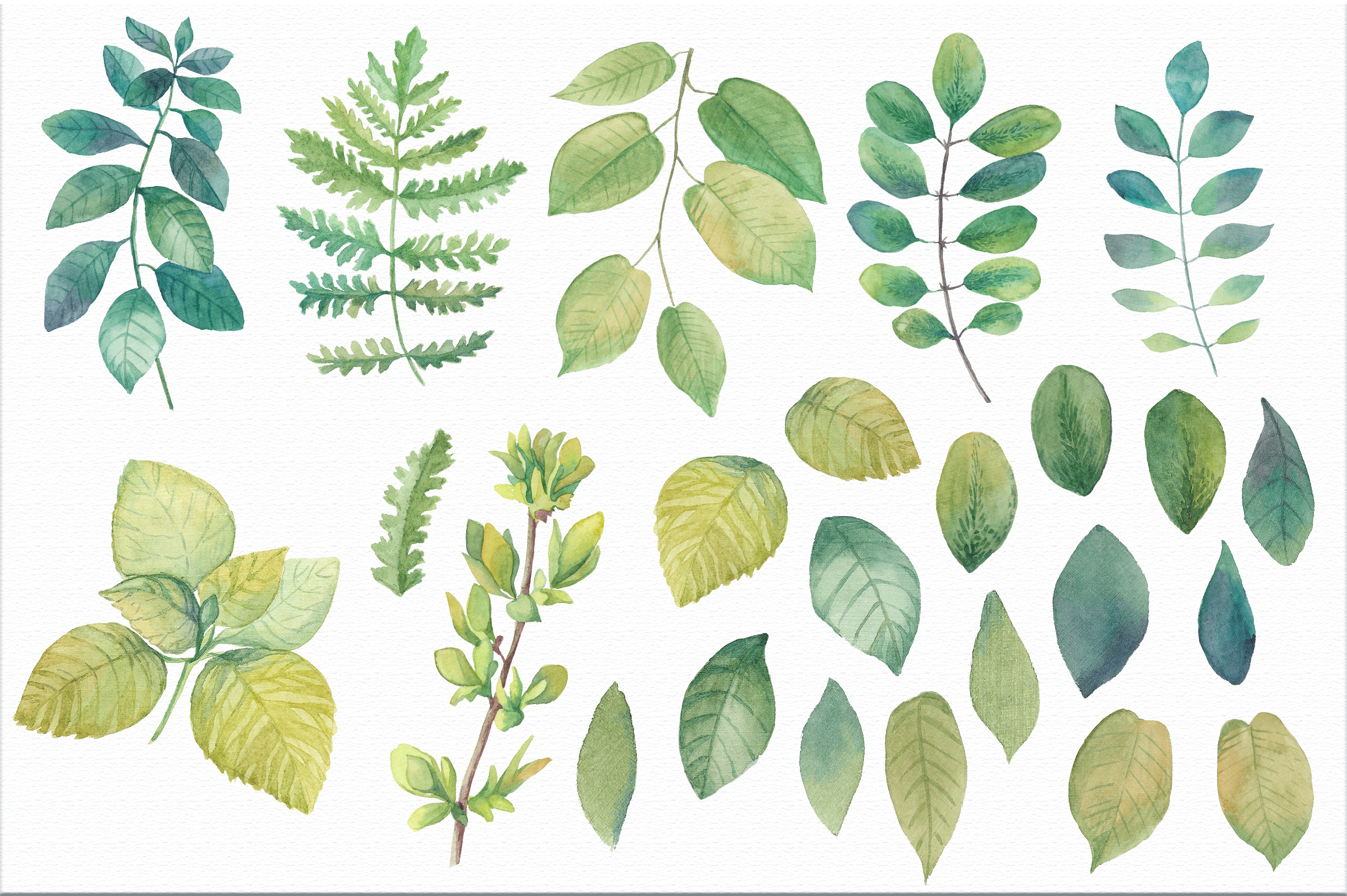 Watercolor leaves & branches example image 2