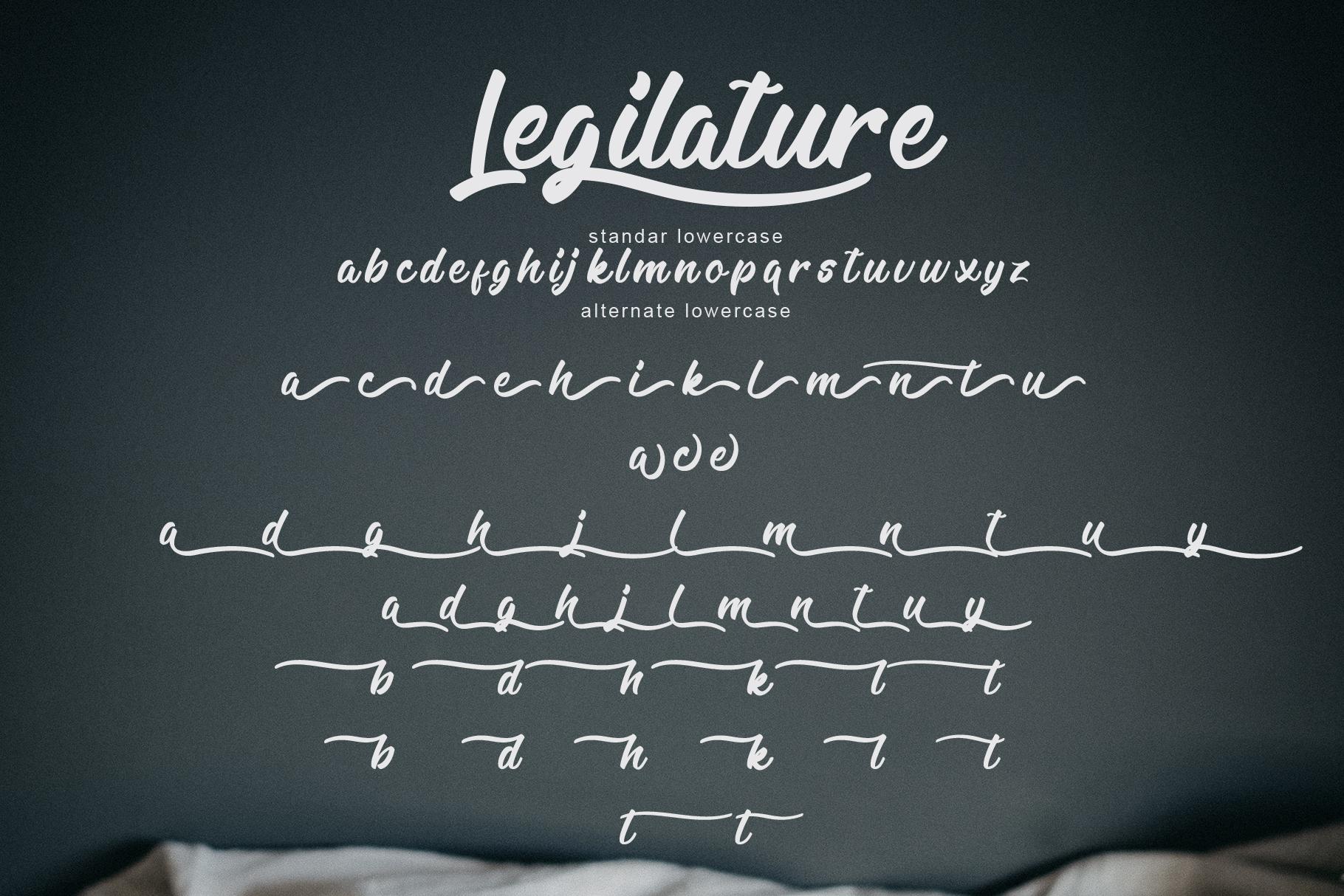 Legilature with BONUS example image 5