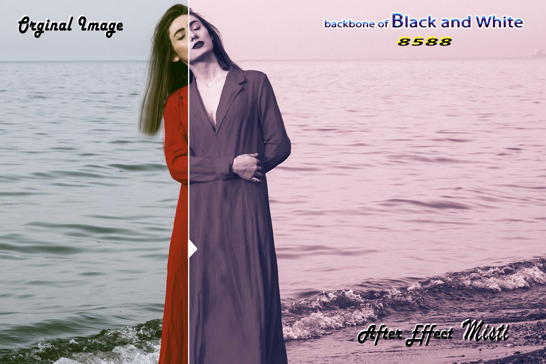Backbone of Black and White Lightroom Presets example image 9
