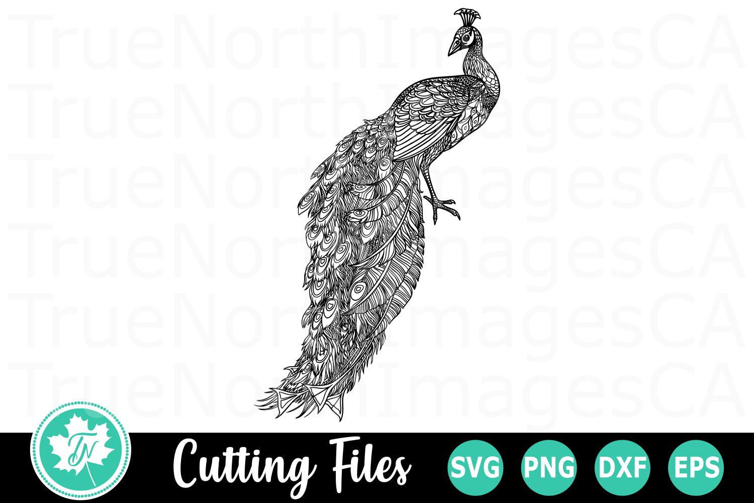 Peacock - A Zentangle SVG Cut File example image 1