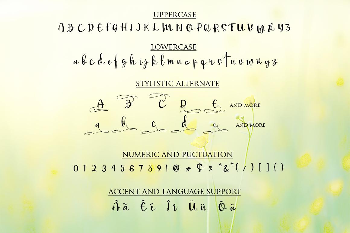 Mellisa Calligraphy Font example image 4