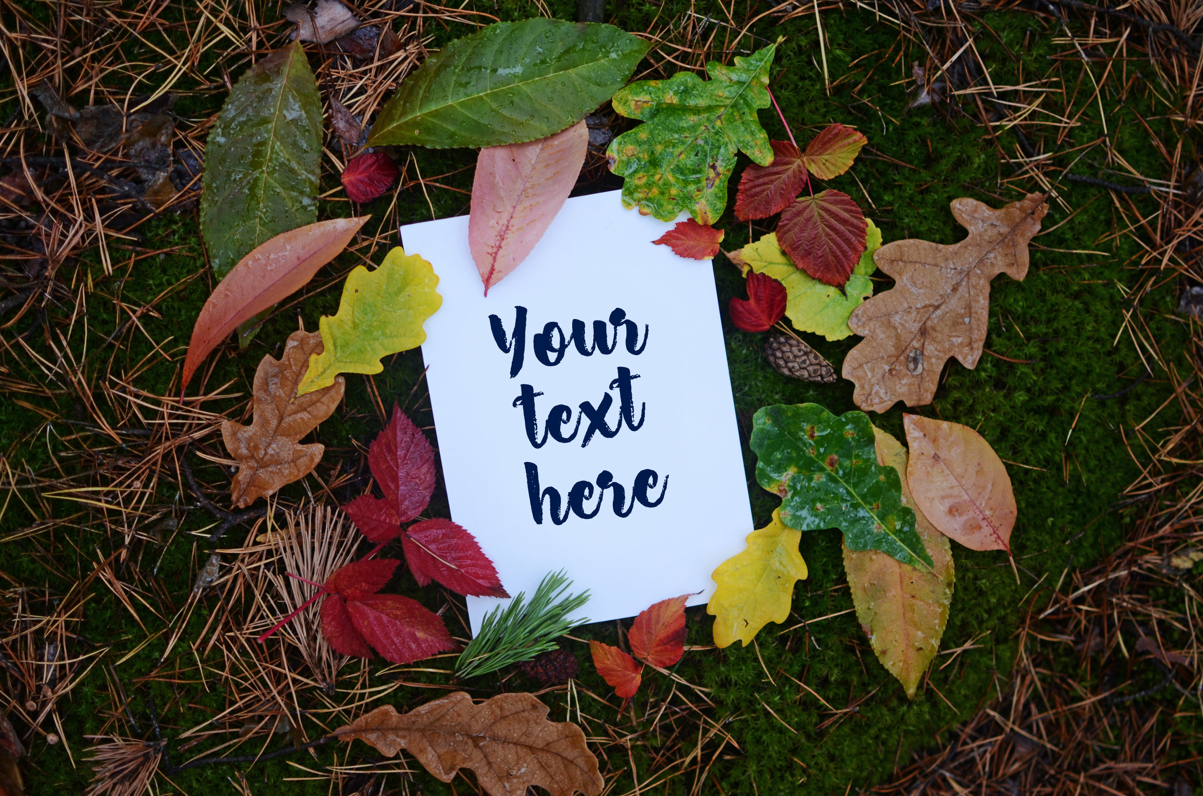 Autumn Mockups (Horizontal+Vertical) example image 1